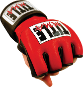 TITLE MMA Cage & Competition Gloves